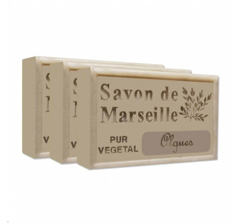 http://www.levillage.com/515-thickbox_default/seaweed-pure-french-marseille-soap-44oz-pack-of-3-bars.jpg
