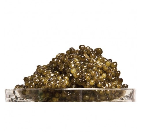 http://www.levillage.com/673-thickbox_default/golden-ossetra-imperial-russian-caviar-1oz.jpg
